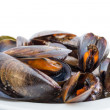Boiled mussels — Stock Photo #17874293