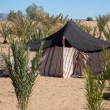 Stock Photo: Bedouin tent