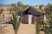 贝都因人帐篷 — 图库照片