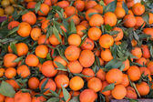 Mandarin background — Stock Photo