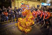 Ano novo chinês — Foto Stock