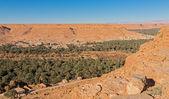 řečiště a canyon — Stock fotografie