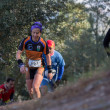 Постер, плакат: Hard mountain race