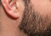 Stubble with gray hairs — Stock Photo
