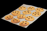 Pumpkin cookies over paper — Stockfoto