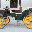 Old carriage — Stock Photo #25804731