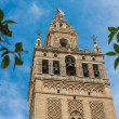 Giralda of Seville — Stock Photo
