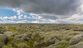 Moss-covered lava fields — Stok fotoğraf