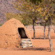 Traditional huts of himba people — Stock Photo