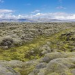 Moss-covered lava fields — Stock Photo