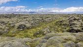 Moss-covered lava fields — Stock fotografie