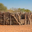Traditional huts of himba people — Stock Photo #31992479