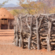 Stock Photo: Traditional huts of himbpeople