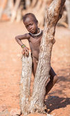 Himba childs — Stock Photo