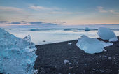 Blue icebergs in the beach — Stock Photo