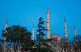Blå moskén, istanbul, Turkiet — Stockfoto