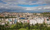 Wide view of Edinburgh skyline — Stok fotoğraf