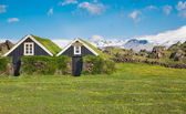 Typical scandinavian houses with grass on the roof — Stock Photo