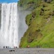 Skogafoss waterfall — Stock Photo #48657951