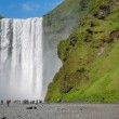 Skogafoss waterfall — Stock Photo #48790741