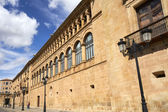 Palacio de los Condes de Gomara — Stock Photo