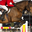Stock Photo: Equestrijumper