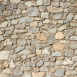 Rustic Wall — Stock Photo #30493471
