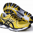 Stock Photo: ASICS GEL-Nimbus Running Shoe