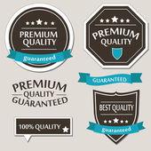 Retro Design Premium Vintage Labels — Stock Vector