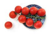 Tomato — Zdjęcie stockowe