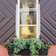 Window — Stock Photo #21325927