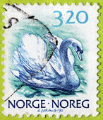Swan Norwegian Stamp — Stock Photo