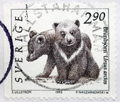 Bear Cubs Stamp — Stock Photo