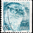 Otter Stamp — Stock Photo