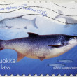Stock Photo: Asp Fish Stamp