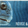 Seawolf Stamp — Stock Photo