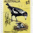Western Magpie Stamp — Stock Photo