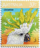 Cockatoo Stamp — Stock Photo