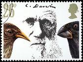 Darwin Stamp — Stock Photo