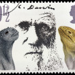 Stock Photo: Darwin Stamp