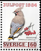 Bohemian Waxwing Stamp — Stock Photo