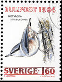 Eurasian Nuthatch Stamp — Stock Photo