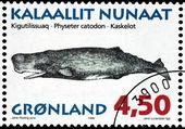 Cachalot Stamp — Стоковое фото