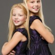 Portrait of two sisters — Stock Photo #39692115