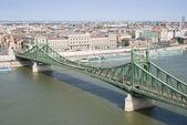 Río danubio con puente de la libertad — Foto de Stock