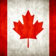 National Flag of Canada — Stock Photo