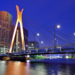 Bridge in Tokio — Stock Photo