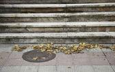 Sonbahar şehir — Stok fotoğraf