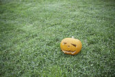 Halloween Pumpkin, horror — Stock Photo