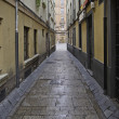 Old alley wet — Stock Photo #16813463